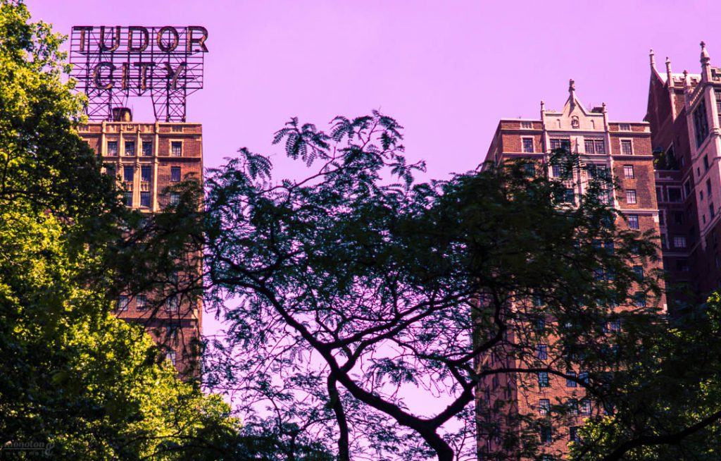 New York Twisted Hues